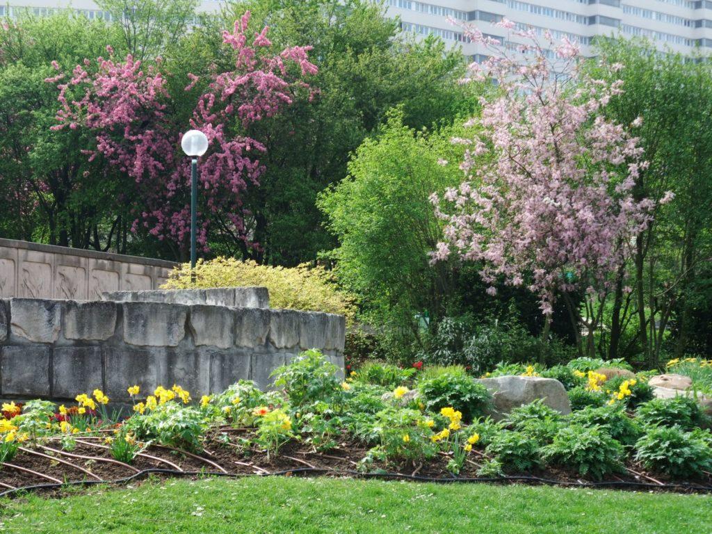 ジョルジュ・ブラッサンス公園の花と木々