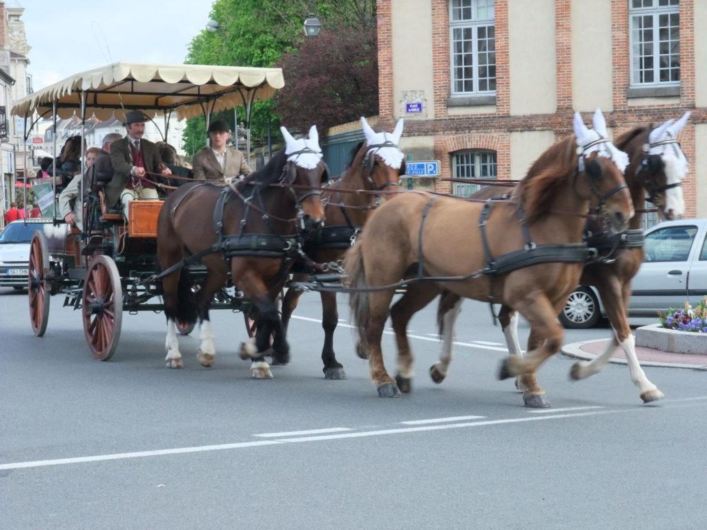 フォンテーヌブロー 観光馬車