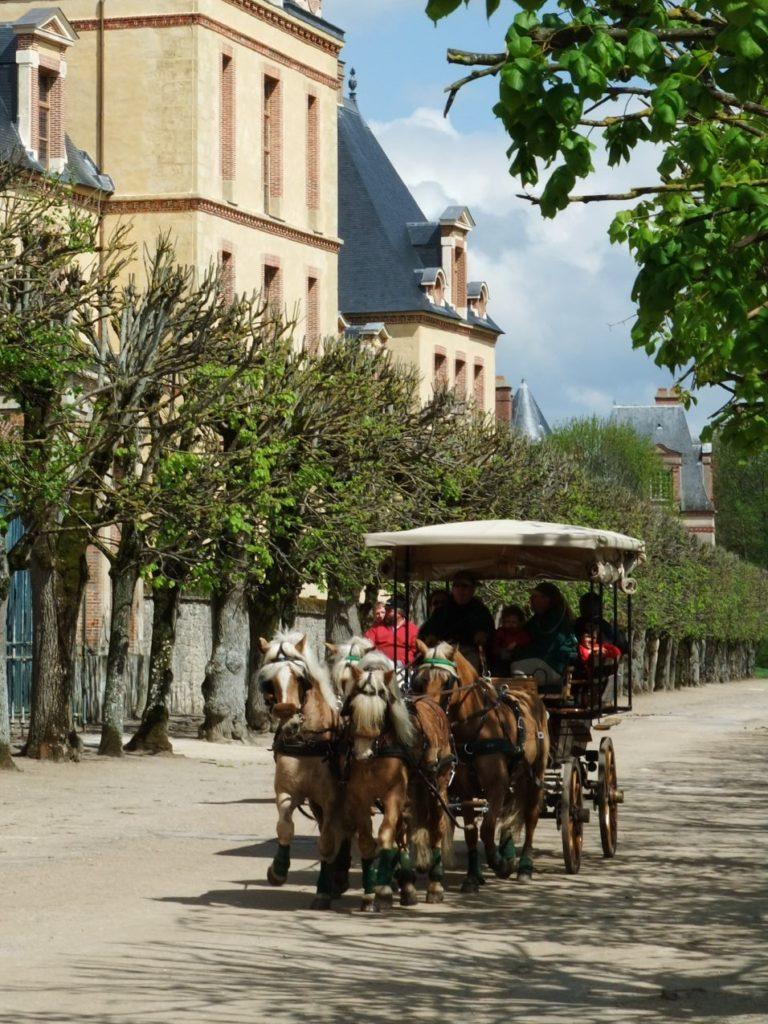 フォンテーヌブロー宮殿の大花壇の周りを走る観光馬車