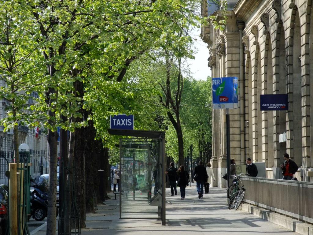 パリ 新緑の歩道